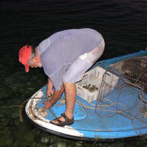 Do Albanii 2009 - świeże ryby w Chorwacji