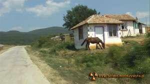 Wyprawa motocyklowa – Bułgarski Bastion Komunizmu – zadbane cygańskie osiedle
