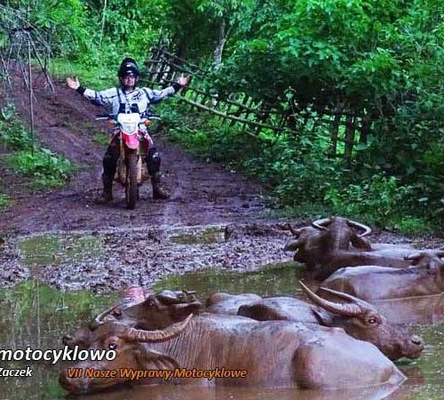VII Nasze Wyprawy Motocyklowe - Tajlandia - motocyklowo