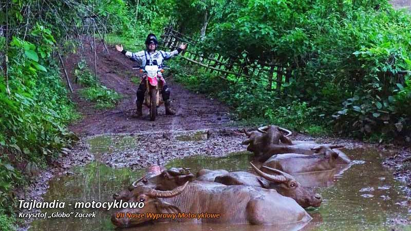VII Nasze Wyprawy Motocyklowe – Tajlandia – motocyklowo