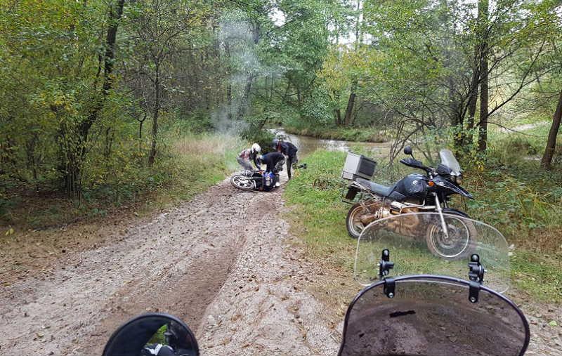 Październik w lesie