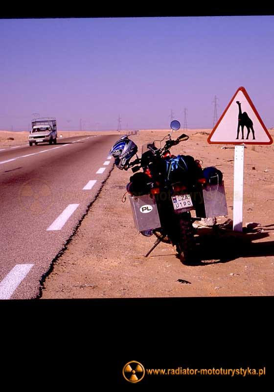 Typowe znaki drogowe w Algierii