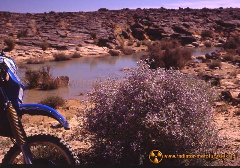 Woda na trasie do Djanet