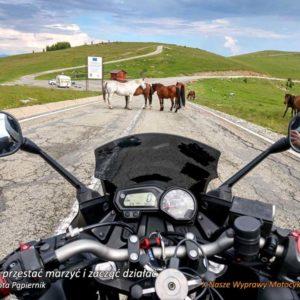 X Nasze Wyprawy Motocyklowe - Jak przestać marzyć i zacząć działać